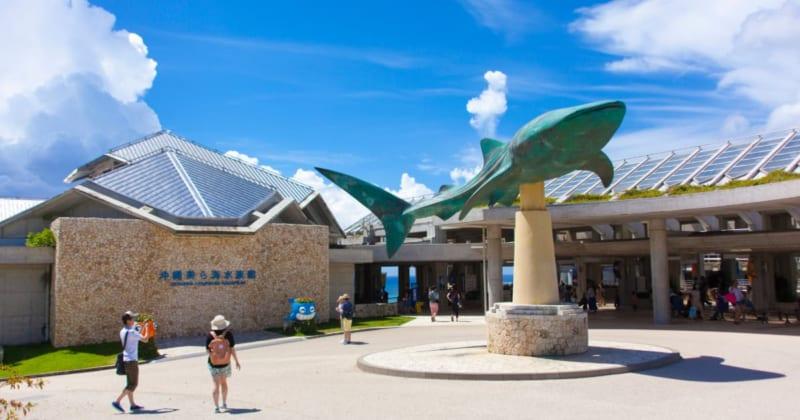美ら海水族館に行くなら立ち寄りたい!おしゃれカフェ3選