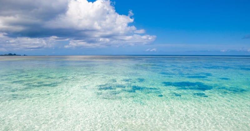 ダイバーからも大人気!石垣島定番の海スポットでエメラルドグリーンの景色を堪能