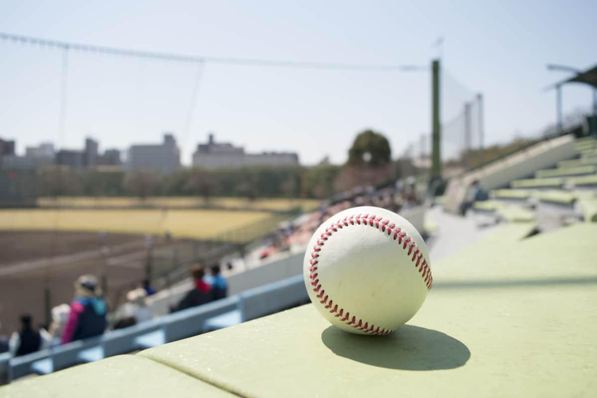 沖縄キャンプで2019年のプロ野球を先取りしよう!
