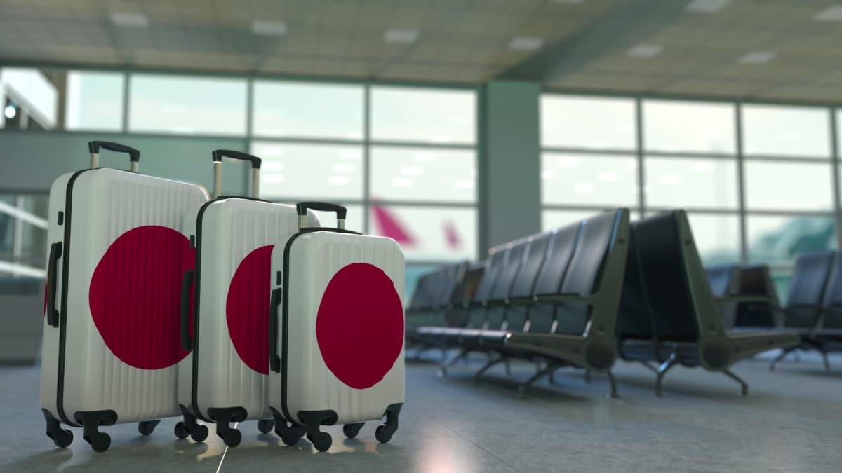 JALの学割「スカイメイト」