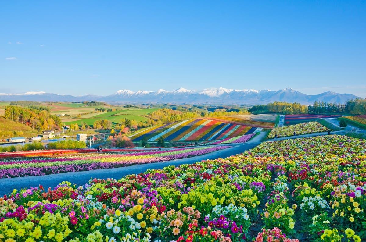 北海道の見どころをもう一度おさらい