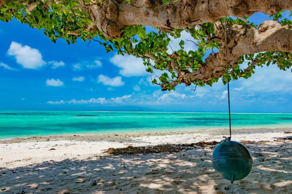 太陽や星の形の砂が流れつく「星の砂」で有名となったカイジ浜<
